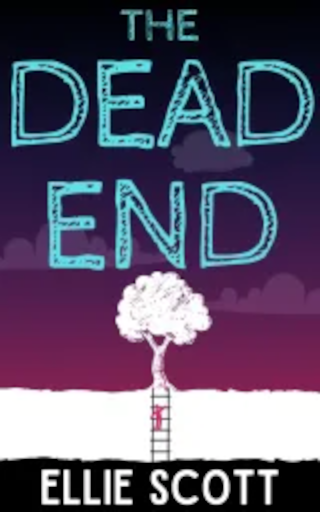 Novel Recommendation: The Dead End